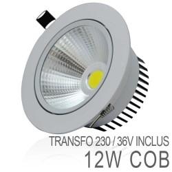 Spot Orientable 12W LED COB IP54