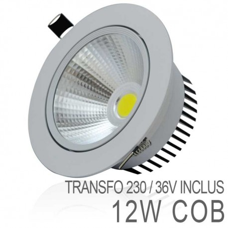 Spot Orientable 12W LED COB IP54