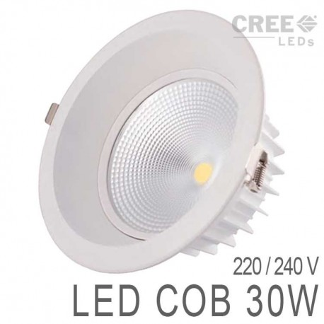 Down Light LED COB 30W