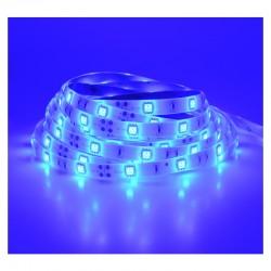 Ruban LED 7.2 Watts /m - Bleu - Rouleau 5M 12V