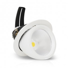 Spot Orientable LED COB Escargot 60W